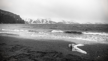 Here on Deception Island LMarun