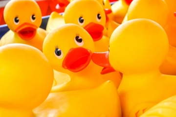 Rubber Ducks 2