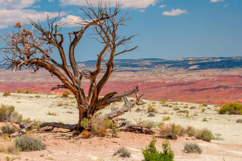 Utah vista-11